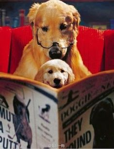 bed time story- Google+