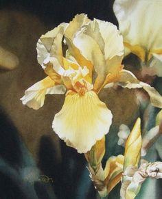 Yellow Iris -- Jacqueline Gnott