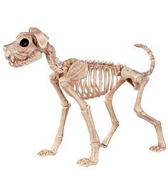 The Boneyard Halloween 21'' Skeleton Buster Dog