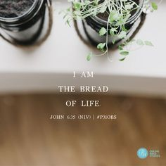 Satisfying Our Soul Cravings Made To Crave, John 6 35, Finding I Am, Life Proverbs, Online Bible Study, The Great I Am, Lysa Terkeurst, I Am Statements, Study Quotes