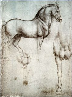 For Thursday Art-Day - Leonardo da Vinci's horses.Leonardo Da Vinci - 1519 Renaissance) appeared to love horses. We know Leonardo's famous portrait painting, the Mona Lisa and The Last Supper wall painting but did you know Leonardo Da Vin. Arte Equina, Silverpoint, Photo Print, Equine Art, Horse Art, Horse Head, Art History, Painting & Drawing, Amazing Art