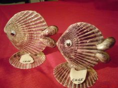 Anything you want in Seashells Handmade for Sale in Summerville SC - OfferUp Seashell Jewelry, Seashell Art, Seashell Crafts, Sea Crafts, Diy Arts And Crafts, Seashell Christmas Ornaments, Shell Animals, Seashell Projects, Shell Decorations