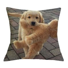 Golden Retriever With Toy Pillow Cases