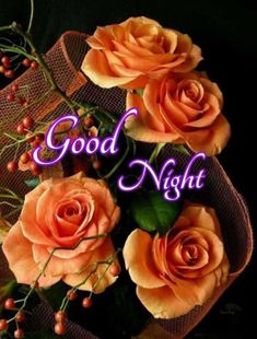 Good Night Blessings, Good Night Wishes, Morning Blessings, Good Night Quotes, Morning Quotes, Good Night Flowers, Good Morning Roses, Good Morning Images Flowers, Cute Good Night
