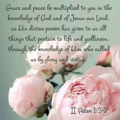 2 Peter 1:2-3