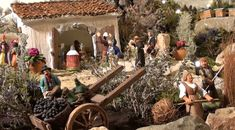 La récolte des olives et les travaux des champs