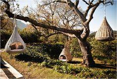 acacia nidos - Buscar con Google