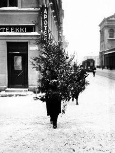 Joulukuusi matkalla kotiin, 1930-luku. Kuva; Pietinen Aarne Oy / Helsingin kaupunginmuseo. History Of Finland, Vintage Christmas, Christmas Tree, Xmas, Helsinki, The Old Days, Scandinavian Style, Good Old, The Past