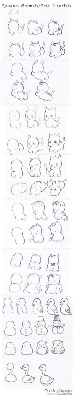 Cute animals quick drawing tutorial.