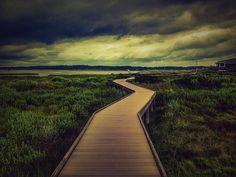 Toms Cove Boardwalk Trail on Chincoteague Island in Virginia
