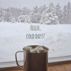 Hello cold days