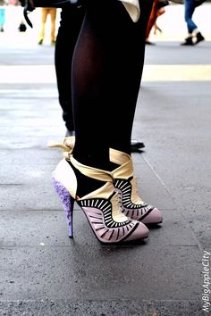 A woman cannot be well dressed without a pretty pair of shoes.