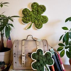 Lucky Mossy Moss Clover perfect as Wall hanging or Shelving decor Moss Wall Art, Moss Art, Moss Decor, Biscuit, Picture Wall, Reindeer, Wall Decor, Shelving Decor, Handmade