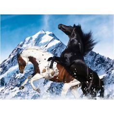Heavenly Horses, Snowy Mountain, 300 Pieces