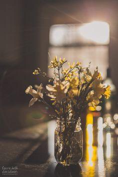 Still Life PhotographyMarch 25, 2015 golden By Laura Beth Davidson