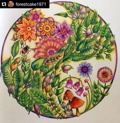 Colorido incrivelmente lindo! Por @forestcake1971 ✨ . . . Floresta Encantada #nossaflorestaencantada #florestaencantada #editorasextante #johannabasford