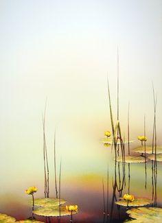 A Gentle Dawn by by Linda Koenig
