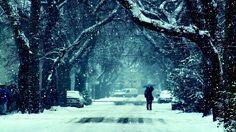 Risultati immagini per snow night Snow Wallpaper Hd, Love Wallpaper, Winter Facebook Covers, Winter Snow Pictures, Snow Night, Winter Songs, Winter Quotes, Twitter Backgrounds, Twitter Headers