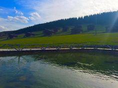 Giresun'a yaklaşık 60 km. mesafede bulunan Kümbet Yaylası, turizm merkezi olup,Giresun'un en popüler yaylalarındandır. Fotoğraf: Tamer Uzuner
