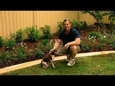 Gardening: How to make great garden edging  Edging is a great gardening tool and Jason can show you how to make it work at its best for your garden. An edge can make the difference between a good garden and a great garden and there are so many different options out there.  More BHG  tips, tricks, recipes and ideas here: http://yhoo.it/1R0j8GQ #GardenEdging, #GardeningTool, #GreatGarden   Read post here : https://www.fattaroligt.se/gardening-how-to-make-great-garden-edging