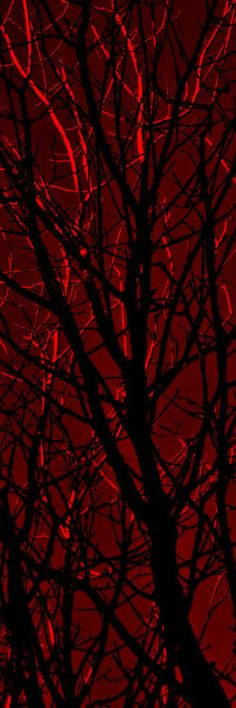 **Red and Black tree branches. #artwork #blackandred http://www.pinterest.com/TheHitman14/black-and-red/