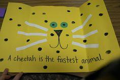 cheetah Cheetah Birthday, School Stuff, Kindergarten, Science, Animals, Animales, Animaux, Kindergartens, Animal