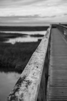 Yarmouth boardwalk. #boardwalk #ocean #marsh #summer