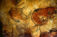 cave paintings | Uncategorized | Easteuropegirl's Blog | Page 2