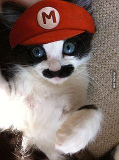 It's-a-me, Mario!