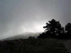 Mountain Bike Inside Fog - http://mountain-bike-review.net/mountain-bike-inside-fog/ #mountainbike #mountain biking