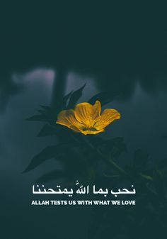 250 Beautiful Islamic Quotes About Life With Images 2017 Updated Black Muslim Doodle Wallpap. Imam Ali Quotes, Muslim Quotes, Quran Quotes Inspirational, Arabic Quotes, Hindi Quotes, Motivational Quotes, Allah Islam, Islam Quran, Islamic Pictures With Quotes