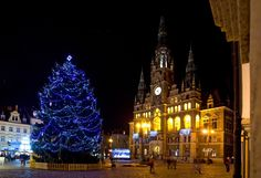 Christmas atmosphere of cities and towns in Czechia : Liberec Empire State Building, Cathedral, Cities, Tower, Christmas, Yule, Xmas, Lathe, Cathedrals