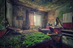 A bed of moss in an abandoned hotel by Photo credit: Matthias Haker