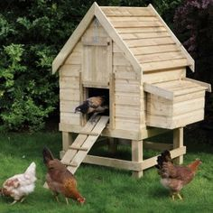 This small chicken coop can comfortably house up to four medium chickens. Complete with internal perches and a two compartment nest box with removable lid for easy egg collection. Urban Chicken Coop, Small Chicken Coops, Best Chicken Coop, Backyard Chicken Coops, Chicken Coop Plans, Building A Chicken Coop, Chickens Backyard, Chicken Coop Designs, Chicken Coop Decor