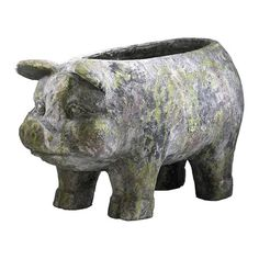I pinned this Aged Pig Planter from the Front Door Décor event at Joss & Main!