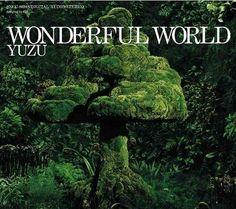 Yuzu - Wonderful World
