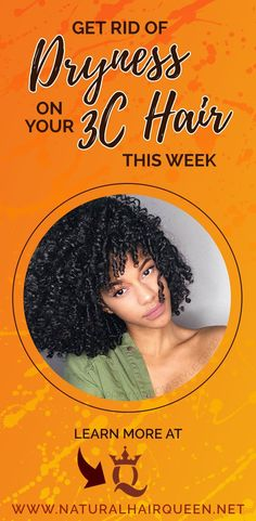 e8957b1740e Get Rid of Dryness on Your 3c Hair this Week