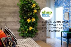 Living Wall Planters | Woolly Pocket