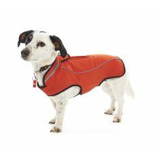 494bdc7c Tøj | Hundetøj | Tøj, Produkter