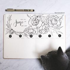 I was so done with May so I decided to start June a little early. All peonies and florals! Then I tried to get a photo and the Cat decided that my journal was the perfect place so sit :) : bulletjournal