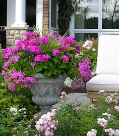container gardening shade - Google Search