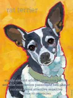 Rat Terrier No. 1 - magnets, cards and art prints on Etsy, $6.00
