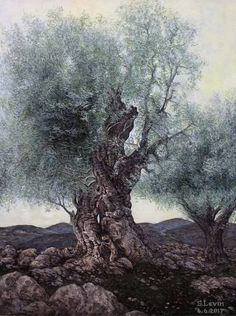 Olive Tree Painting Landscapes 15 Ideas For 2019 Oil Painting Trees, Watercolor Trees, Oil Painting On Canvas, Tree Paintings, Magical Tree, Old Trees, Tree Photography, Tree Silhouette, Paisajes