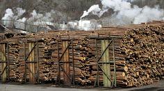 GJELDSKRISE: Høy gjeld og papirmarkeder i nedgang har sendt Norske Skog mot kanten av stupet.