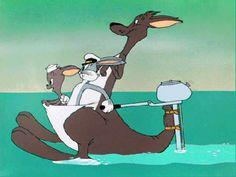 How I imagine Australians travel in the summer