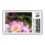 pretty wild pink rose flowers save the date stamps - Stamps Save The Date Stamp, Pink Rose Flower, Custom Stamps, Self Inking Stamps, Stationery, Dating, Pretty, Papercraft, Quotes