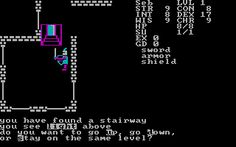 Telengard, a role playing game from 1982.  Still surprisingly addictive if you can accept that your characters fate is as much the result of chance as your own decisions.