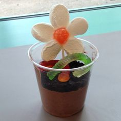 Dirt cups with marshmallow and dum dum flowers!