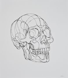 Line Drawing, Drawing Sketches, Tattoo Drawings, Art Drawings, Skeleton Art, Skull Tattoos, Art Tattoos, Anatomy Art, Skull Art