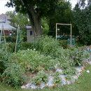 7 consejos para facilitarte la vida en la huerta ecológica  #Huerto urbano ecoagricultor.com